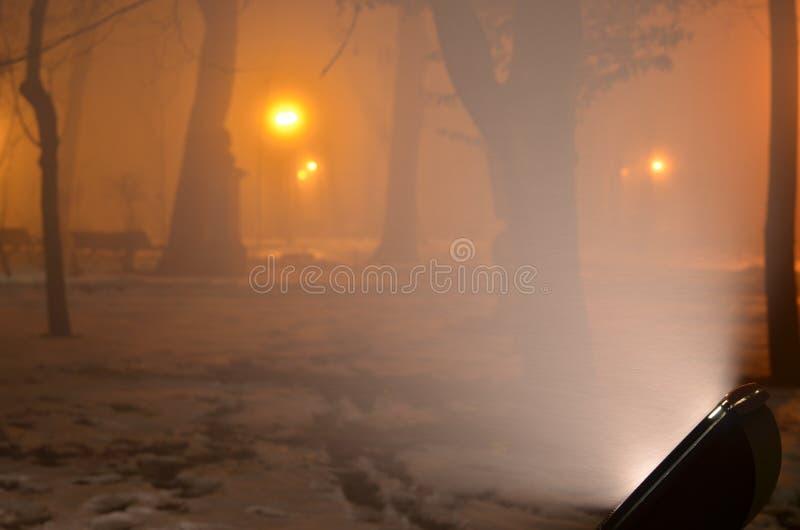 Noite enevoada do inverno no parque imagem de stock