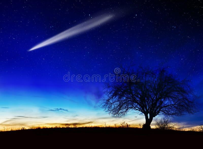 Noite estrelado imagens de stock