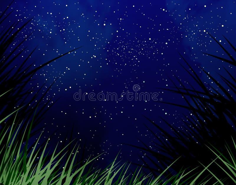 Noite estrelado ilustração do vetor