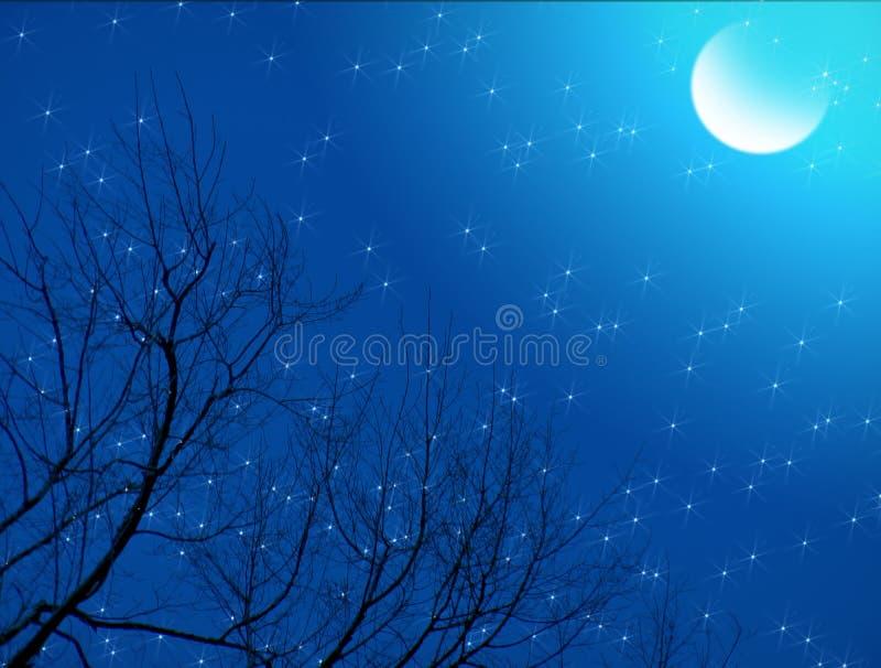 Noite estrelado enluarada fotografia de stock royalty free