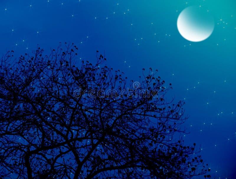 Noite estrelado enluarada imagem de stock royalty free
