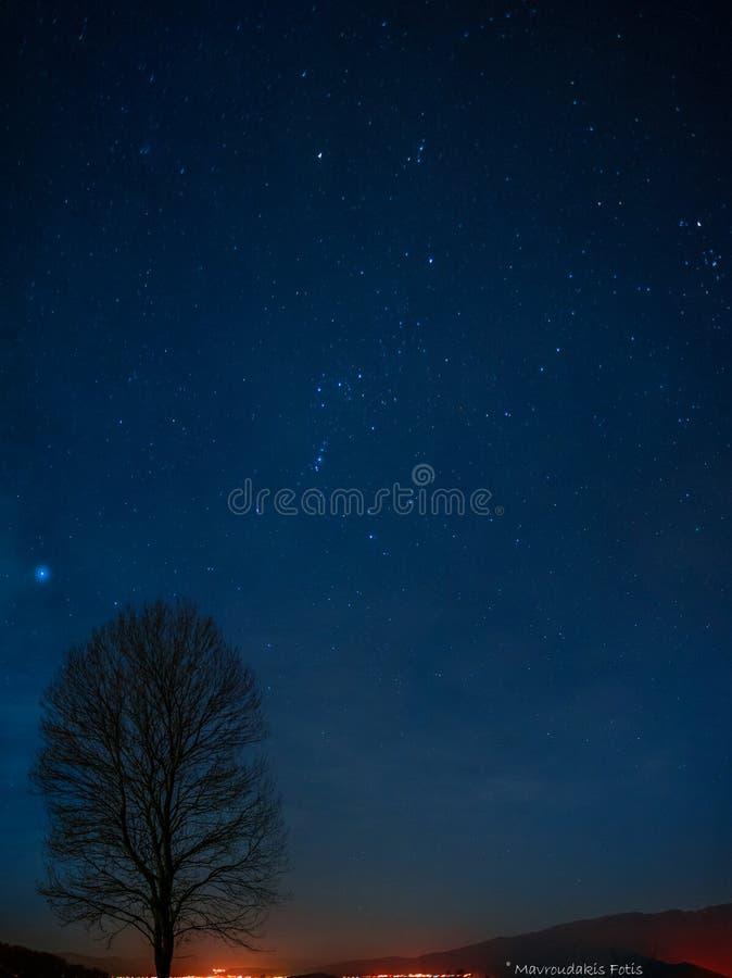 Noite estrelado idílico foto de stock