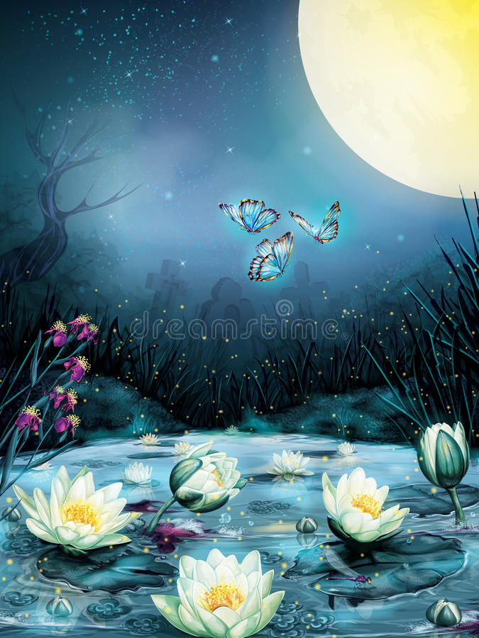Noite estrelado no pântano ilustração royalty free