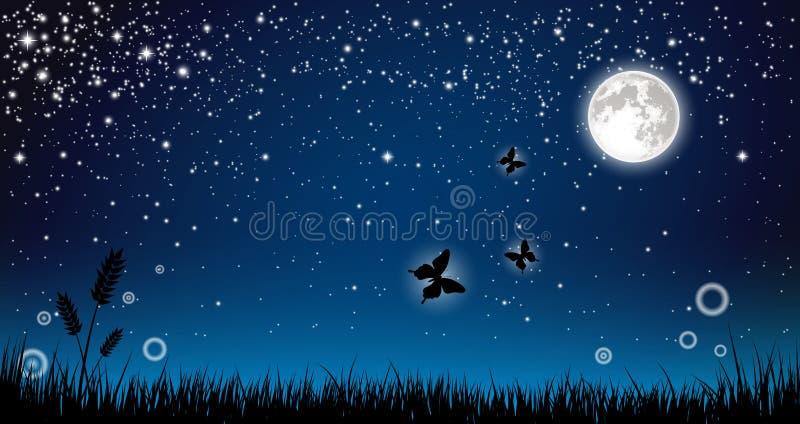 Noite feericamente ilustração do vetor