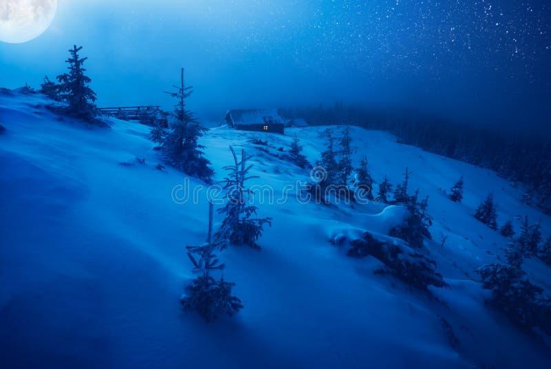 Noite feericamente azul imagem de stock