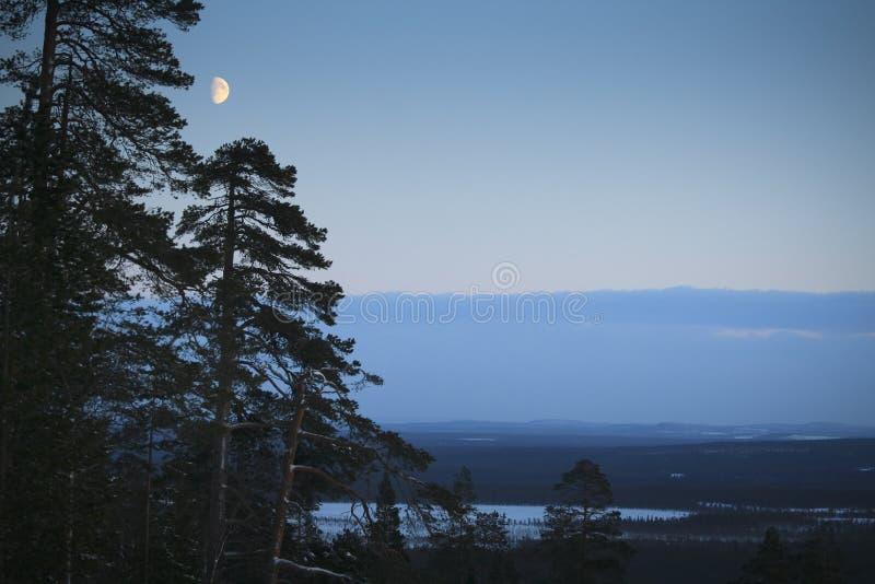 Noite/luar/paisagem do inverno fotos de stock