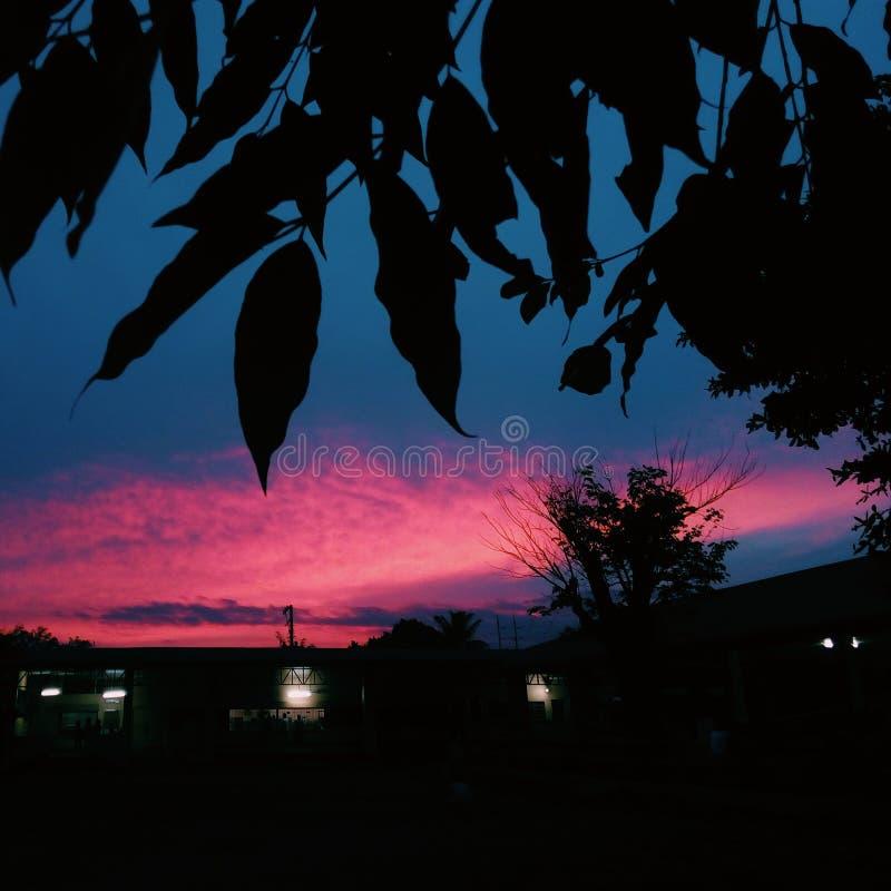 Noite na escola imagens de stock