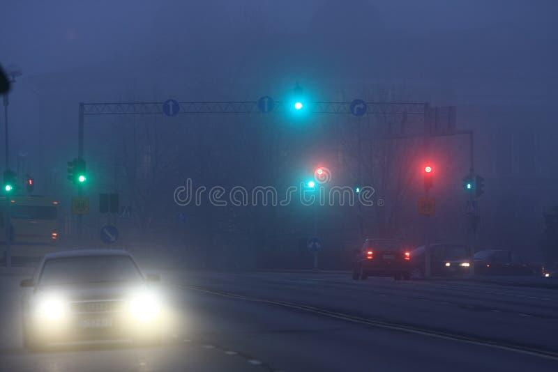 Noite nevoenta foto de stock royalty free