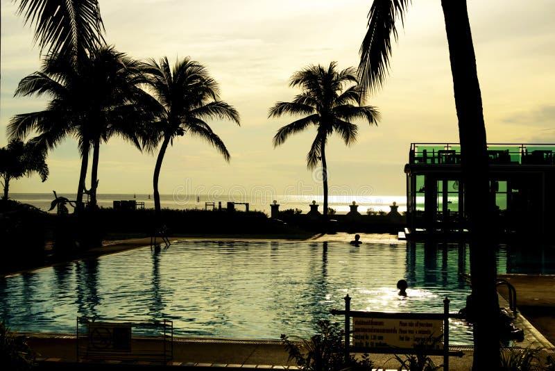 Noite no hotel tropical, na silhueta da palmeira e na natação foto de stock