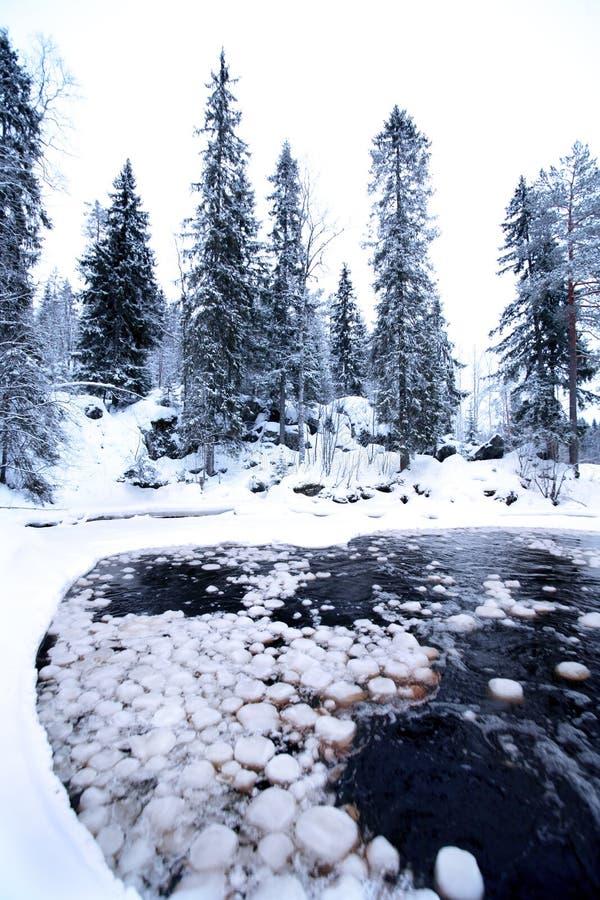 Noite no lago da floresta com córrego da água fotos de stock
