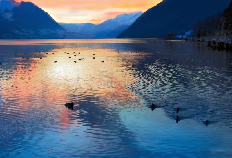 Noite no lago suíço, Switzerland fotografia de stock