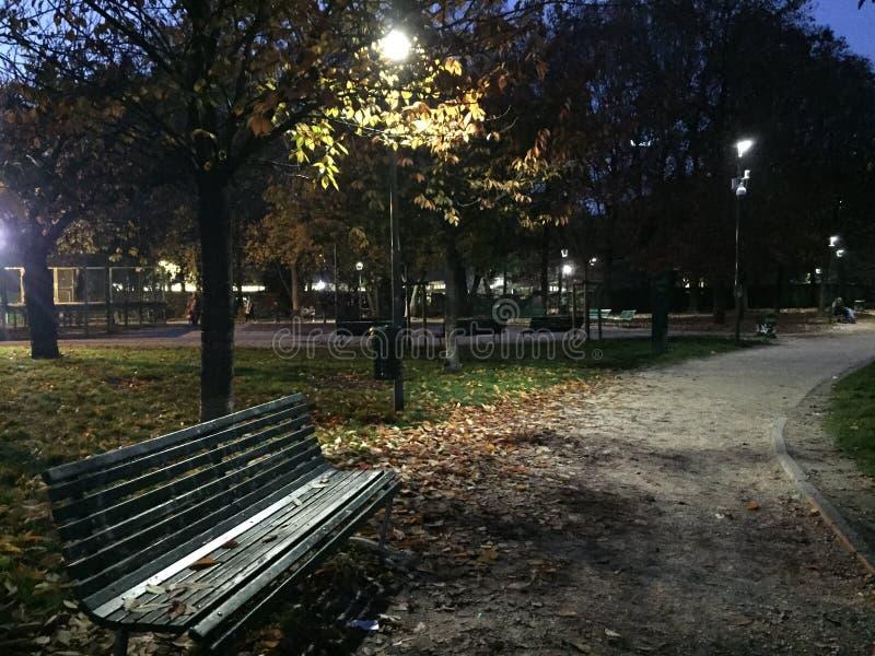 Noite no parque do outono fotos de stock royalty free