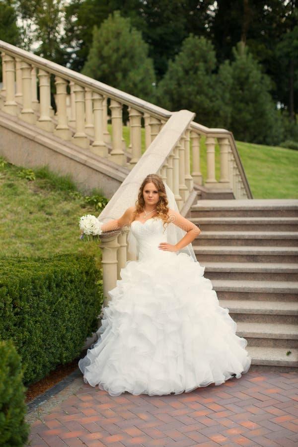 Noiva à moda no vestido branco fotografia de stock royalty free