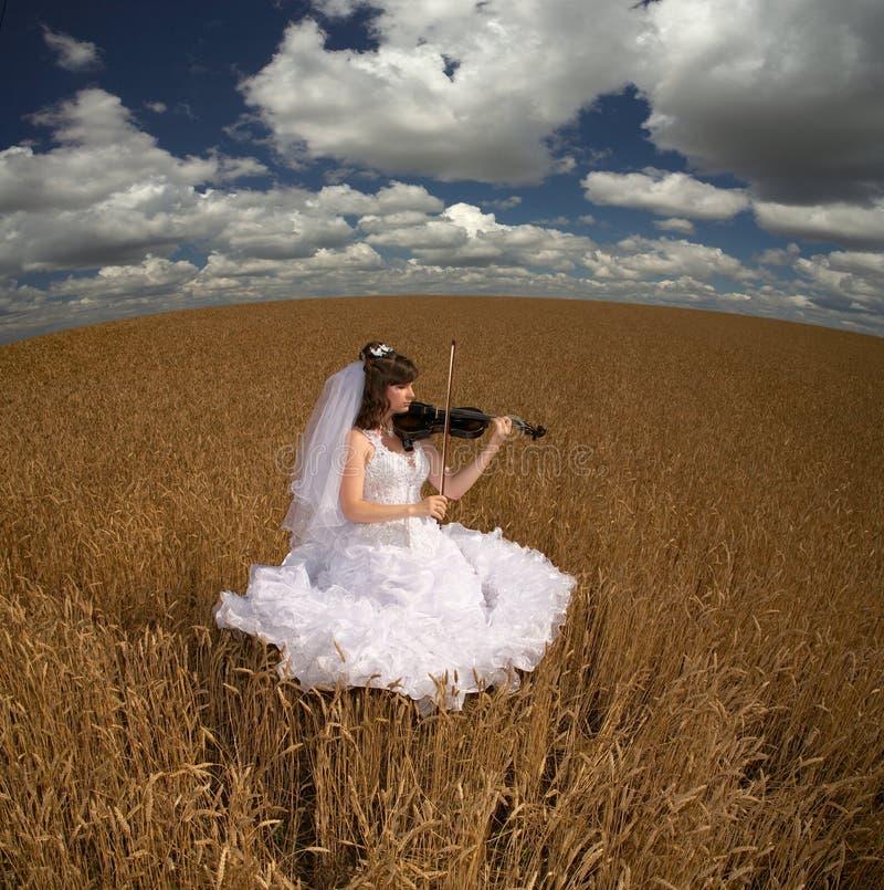 Noiva & violino fotografia de stock