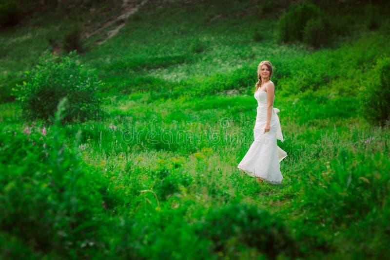 Noiva bonita contra o contexto da montanha e da grama imagem de stock royalty free