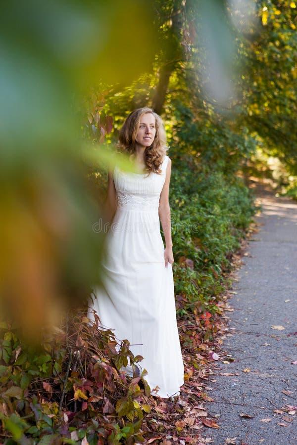 Noiva bonita no vestido branco no parque do outono imagem de stock