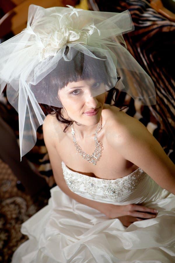 Noiva bonita nova imagens de stock royalty free