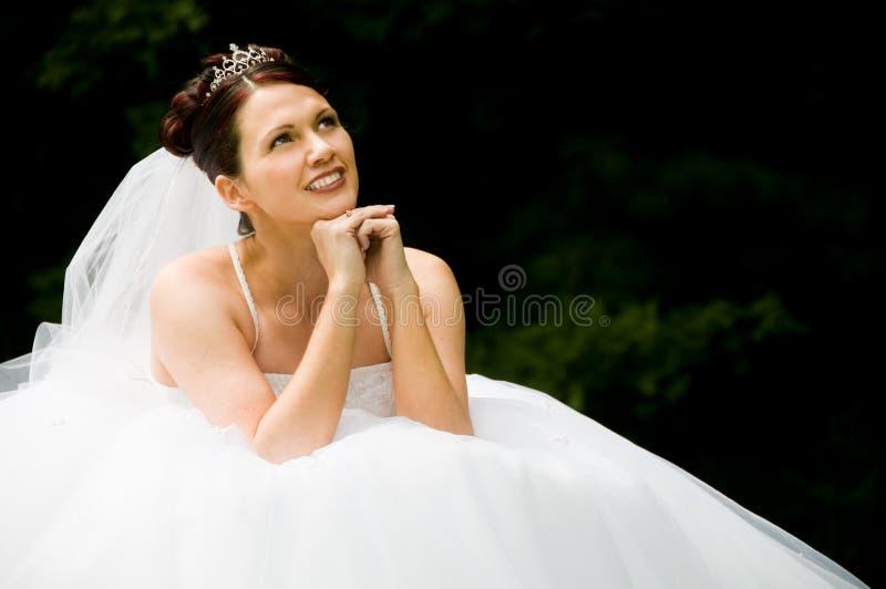 Noiva branca imagens de stock