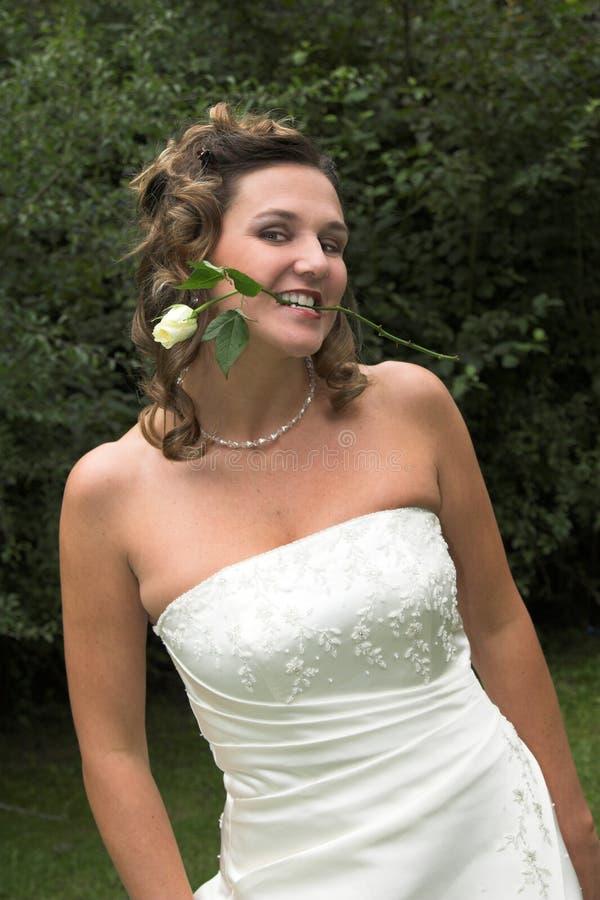 A noiva com levantou-se fotografia de stock