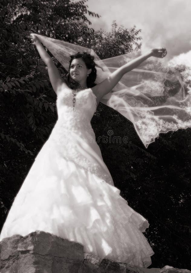 Noiva com um véu foto de stock