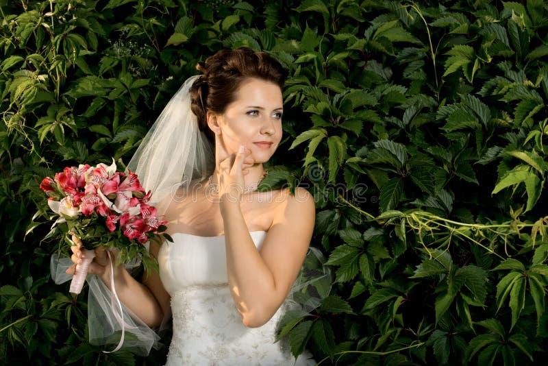 Download Noiva de Beautifull imagem de stock. Imagem de nosegay - 26519255