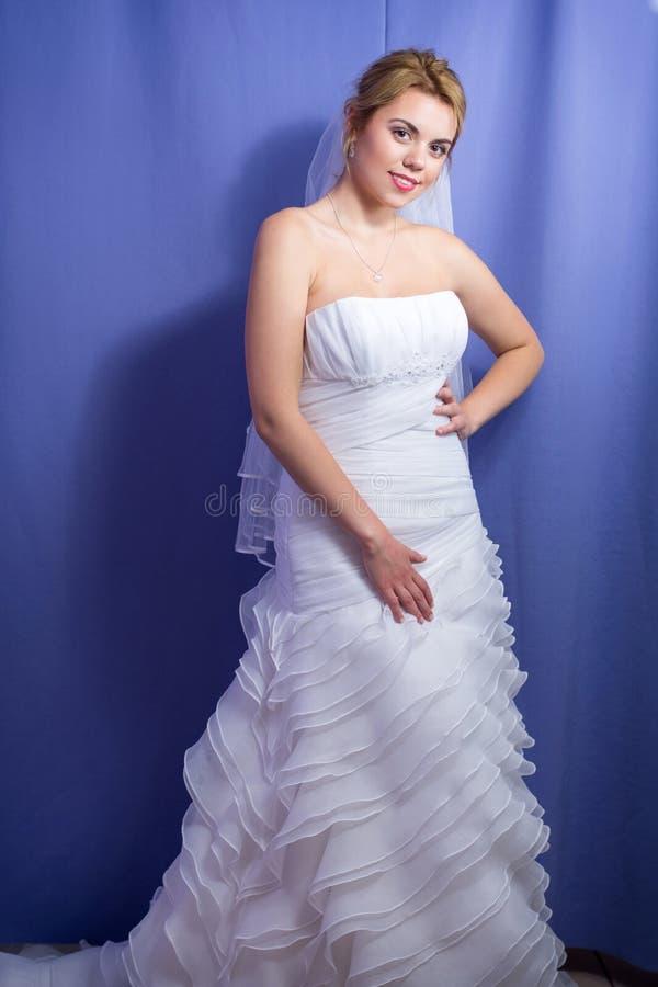 Noiva de casamento do vestido em um retrato de casamento pre imagem de stock