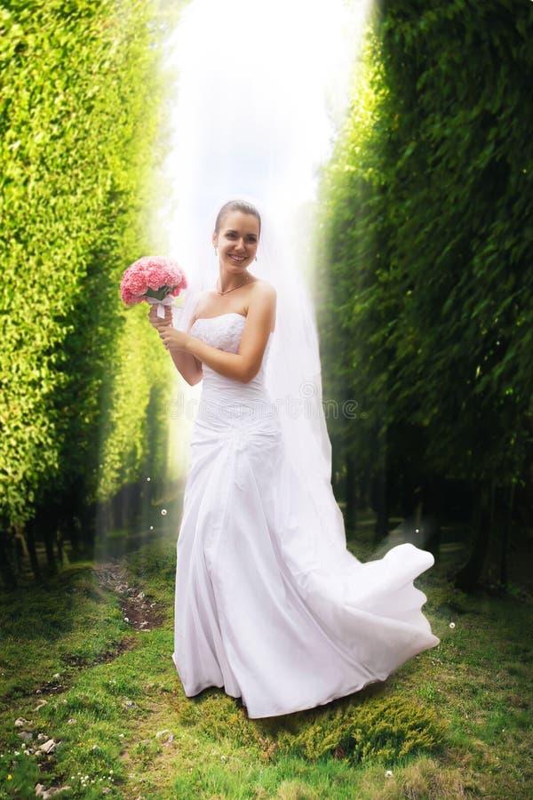 Noiva de sorriso entre árvores na luz solar foto de stock royalty free