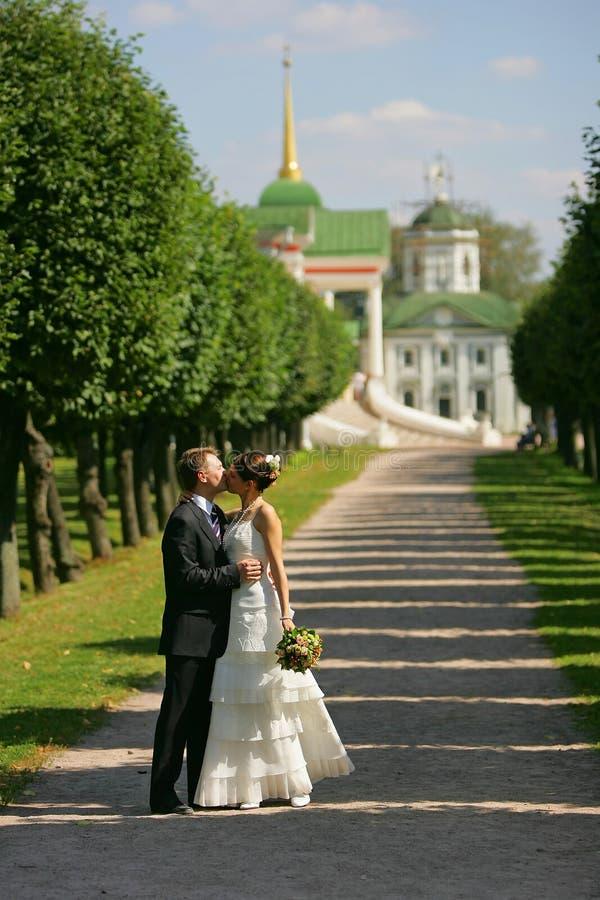 Noiva e noivo brancos do casamento imagem de stock