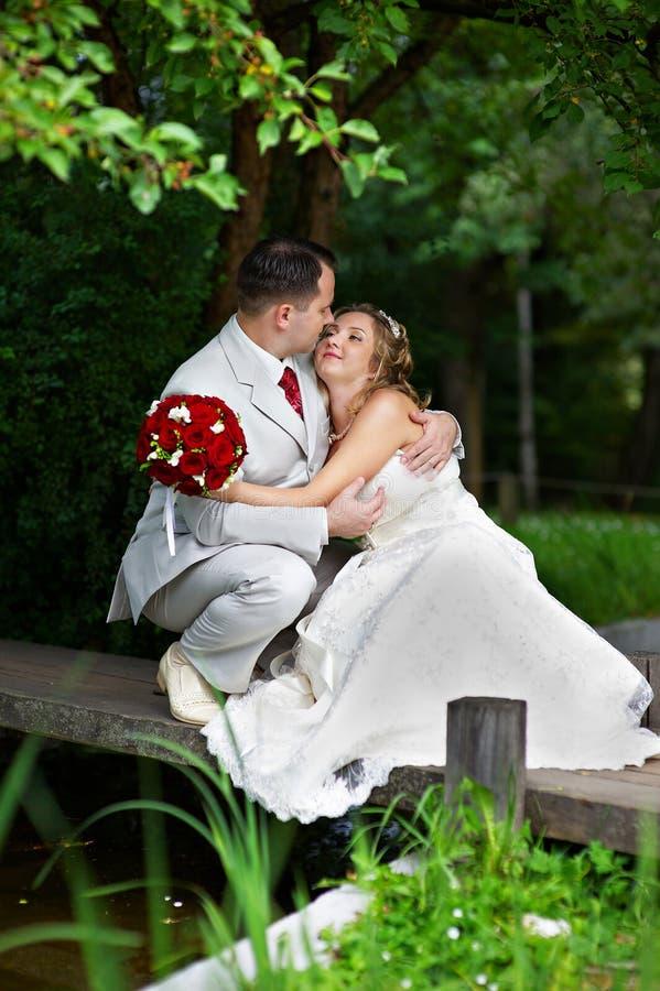 Noiva e noivo em uma ponte de madeira foto de stock