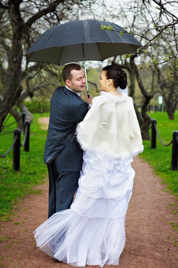 Noiva e noivo na caminhada do casamento com guarda-chuva imagem de stock