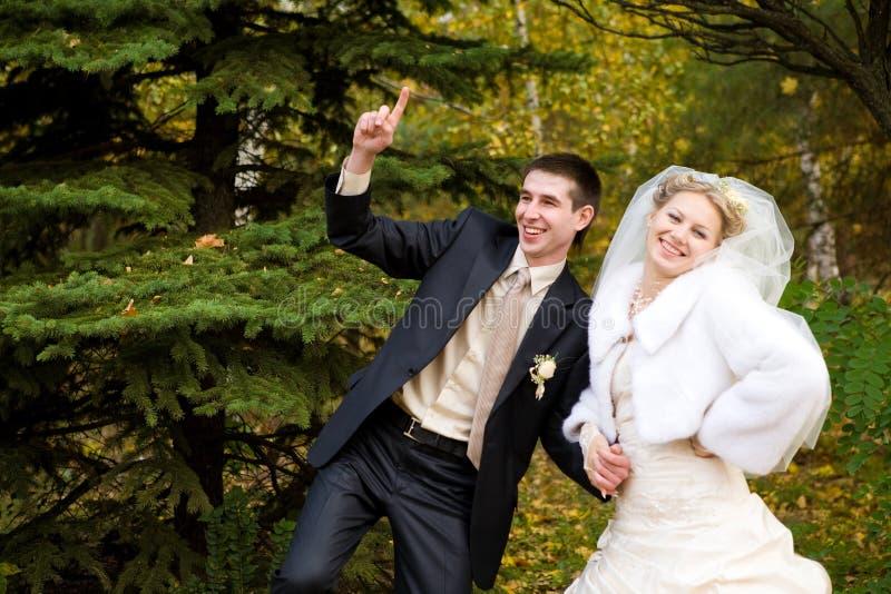 Noiva e noivo no outono fotografia de stock