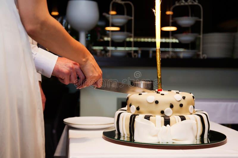 Noiva e noivo que cortam o bolo imagens de stock