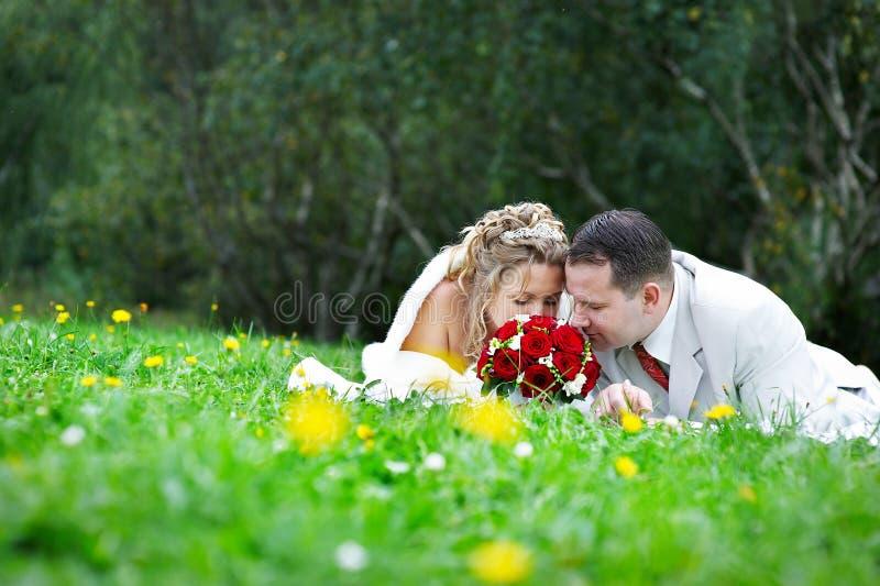 A noiva e o noivo estão na grama imagens de stock
