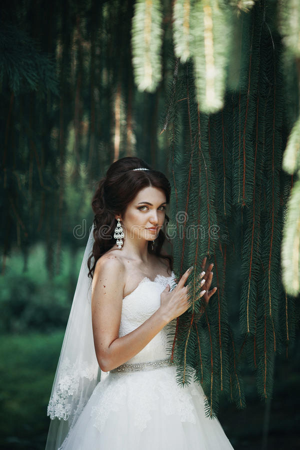 Noiva emocional que levanta perto da árvore de Natal no parque imagem de stock royalty free