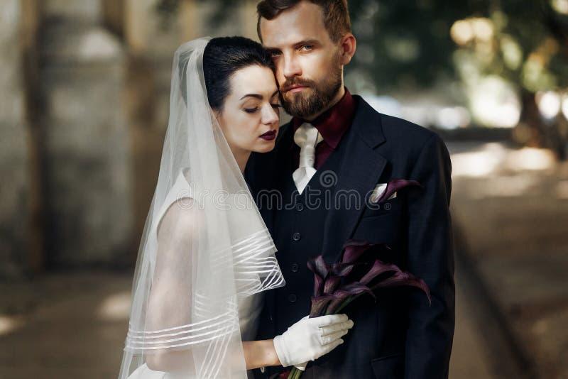 Noiva lindo elegante e noivo considerável à moda na luz solar po imagem de stock royalty free