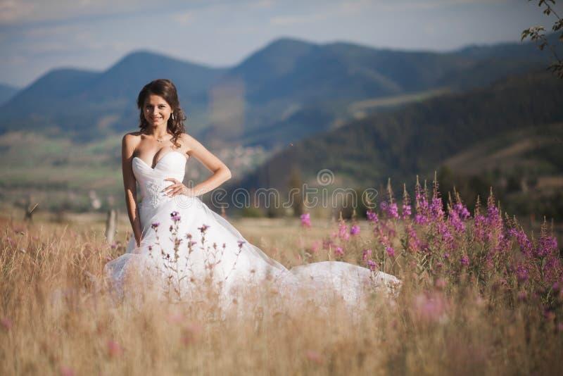 Noiva lindo no vestido elegante que levanta no dia de verão ensolarado em um fundo das montanhas imagens de stock royalty free
