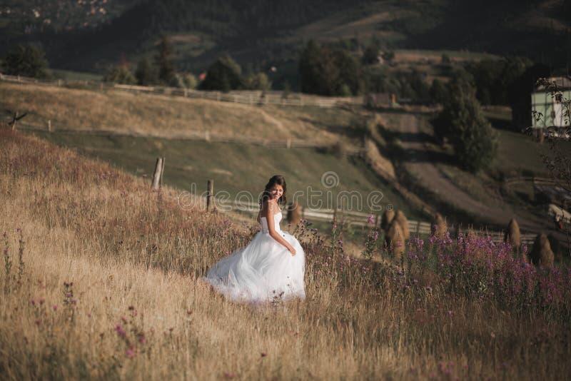 Noiva lindo no vestido elegante que levanta no dia de verão ensolarado em um fundo das montanhas fotos de stock