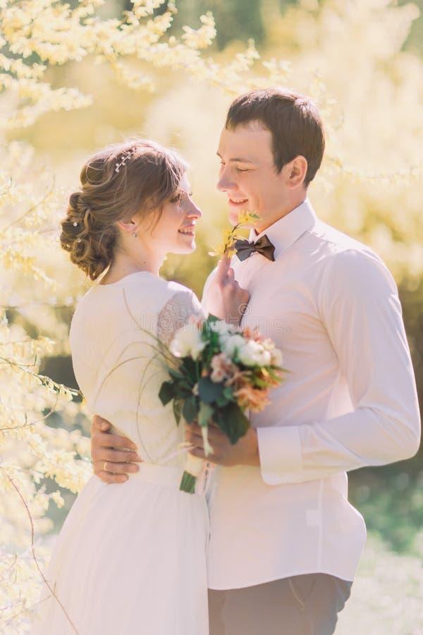 Noiva loura nova bonita sensual e noivo considerável frente a frente no por do sol no close-up do parque fotos de stock royalty free