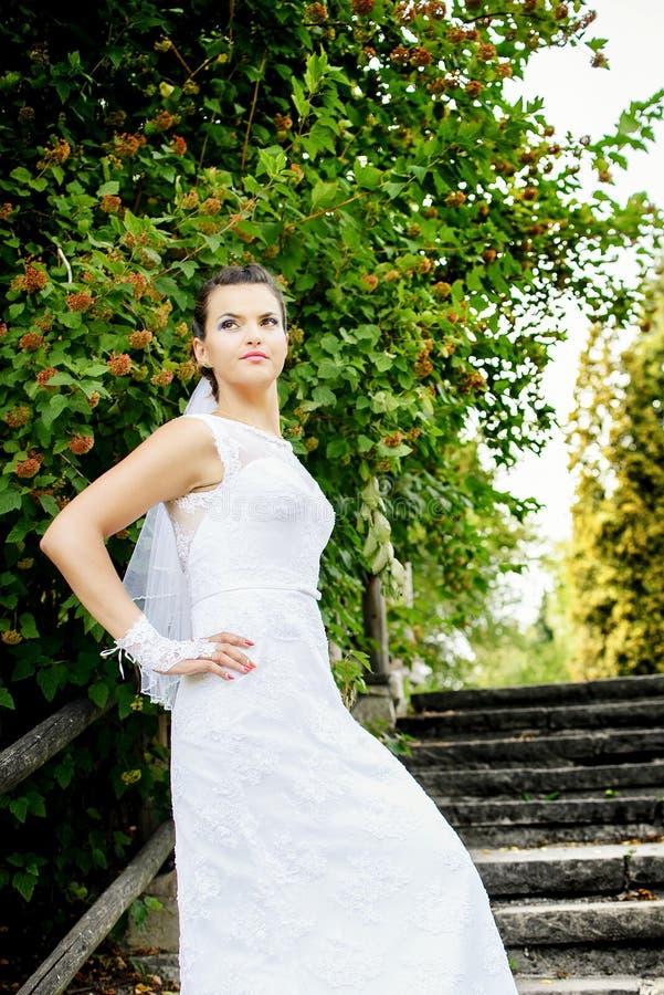 Noiva moreno à moda bonita que levanta nas escadas no parque fotografia de stock