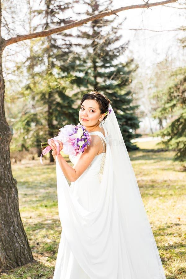 Noiva moreno nova no parque na natureza com imagem de stock