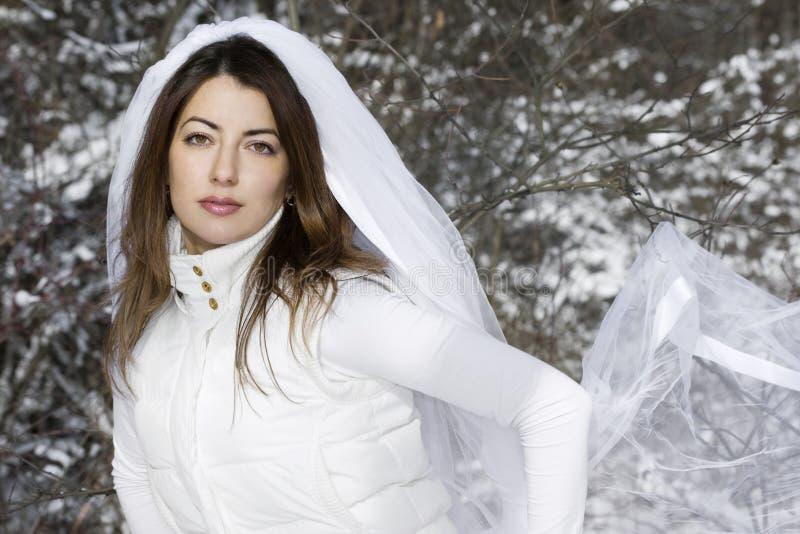 Noiva no inverno imagens de stock royalty free