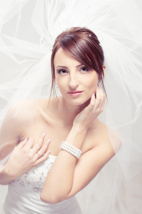 Noiva no véu branco   foto de stock royalty free