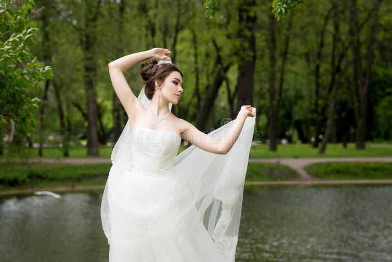 A noiva no véu e o branco vestem-se, casamento, mulher atrativa fotos de stock royalty free