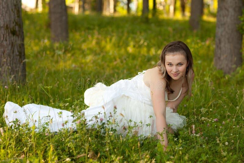 Noiva no vestido branco fotografia de stock royalty free