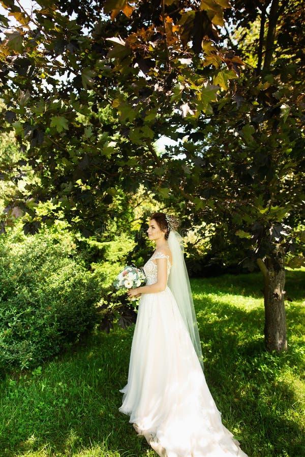 Noiva no vestido de casamento da forma no fundo natural Um retrato bonito da mulher no parque fotos de stock
