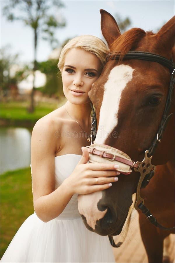 Noiva nova bonita e elegante, menina modelo loura com olhos azuis e penteado à moda no vestido branco que levanta com hor marrom imagem de stock