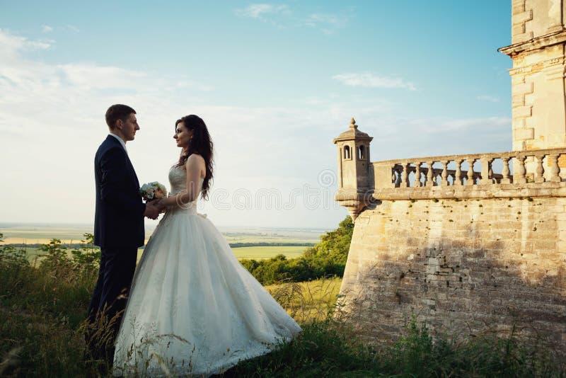 Noiva nova moreno lindo e noivo encantador que guardam as mãos a foto de stock