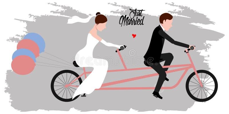 Noivo e noiva em uma bicicleta Apenas casal ilustração do vetor