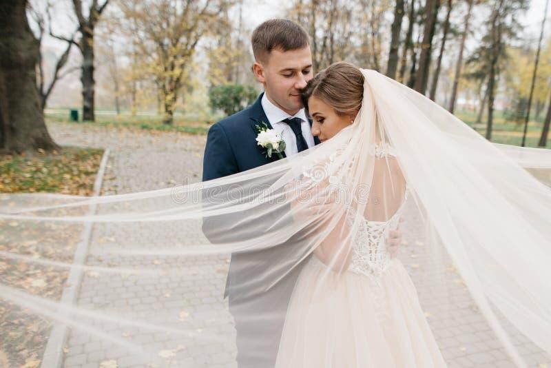 Noivo e noiva junto Pares do casamento foto de stock