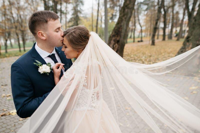 Noivo e noiva junto Pares do casamento fotografia de stock